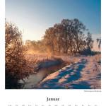 Wintermorgen am Birkenweg
